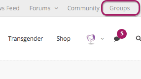 Accessing and Creating Groups on Crossdresser Heaven